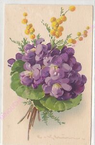 CPA-ILLUSTRATEUR-CATHARINA-KLEIN-bouquet-fleurs-violette-mimosa
