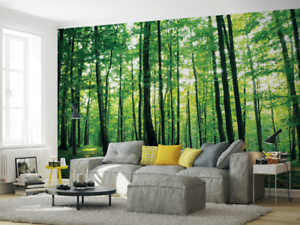Parete Verde Ufficio : Select size photo wallpaper wall mural for home office nursery green