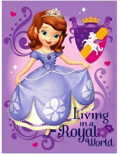 Disney Sofia The First Royal Plush Raschel Throw 40 X 40 EBay Awesome Sofia The First Throw Blanket