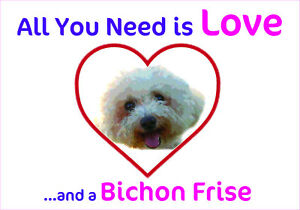 Incroyable Image Is Loading Funny Love And A BICHON FRISE Vinyl Car