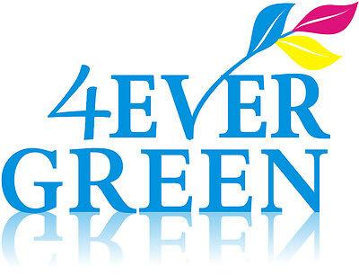 4-evergreen