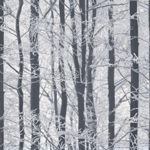 Arthouse 670200 Silber Birkenwald Mattiert Holz Tapete