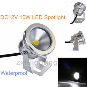 10W LED Extérieur Lampe Blanc Etanche 12V Luminaire Piscine Etang ...