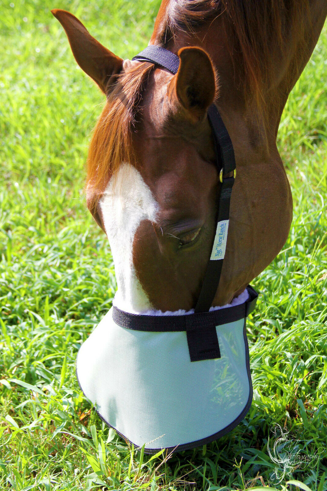 New 90% UV proof shade that covers the horse's entire muzzle w  sheepskin GREAT