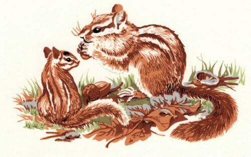 """Chipmunk Mama and Baby 1 pc 4-7//8/"""" Waterslide Ceramic Decal Xx"""