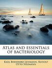 Atlas and Essentials of Bacteriology by Karl Bernhard Lehmann, Rudolf Otto Neumann (Paperback / softback, 2010)