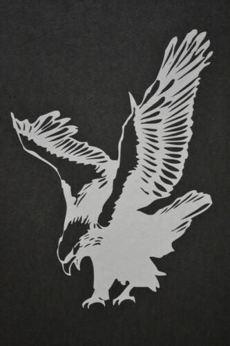 19cm BIRD OF PREY AQUILA ALATA Harris Hawk Osprey CACCIA FALCONERIA Adesivo Decalcomania