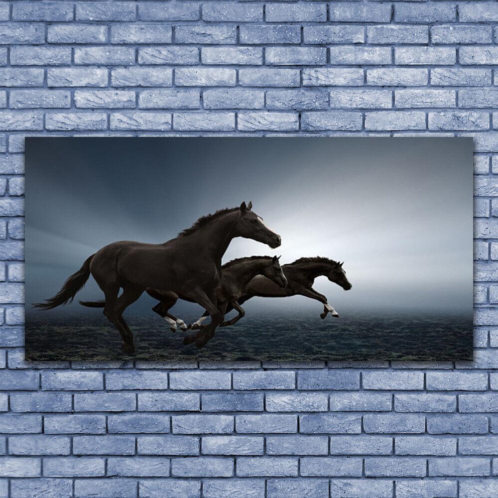 Wandbilder Glasbilder Druck auf Glas 140x70 Pferde Tiere