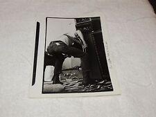 Grateful Dead / Phil Lesh - 8 x 10 Original Photo Print - Cool & Funny Picture!