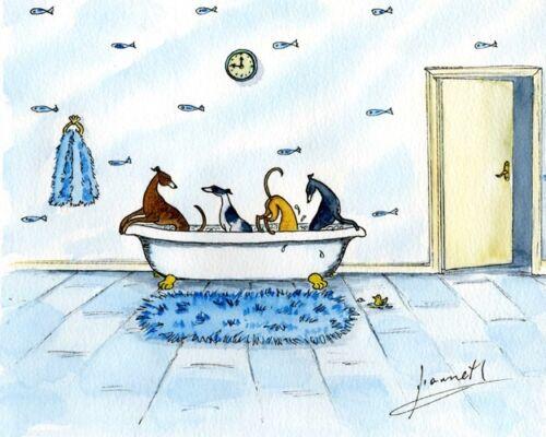 6226 DIANNE HEAP GREYHOUND WHIPPET LURCHER DOGS  PAINTING BATH PRINT FUN ART