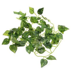 2M-Artificial-Vine-Leaf-Scindapsus-Plant-Garland-for-Reptiles-Terrarium-Fashion