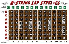 8 String Lap Steel Guitar Chart Poster C6 Tuning Notes Fretboard