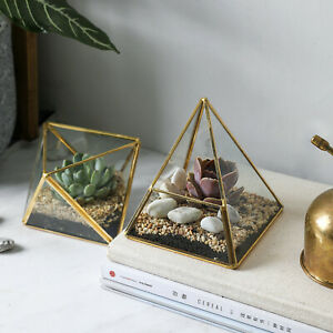 2pcs-Glass-Geometric-Container-Terrarium-for-Succulent-amp-Air-Plant-Gold-Clear