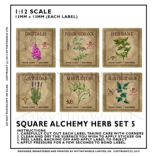 Casa De Muñecas herbolario//Boticario Set 5 Etiqueta de hierba Cuadrado