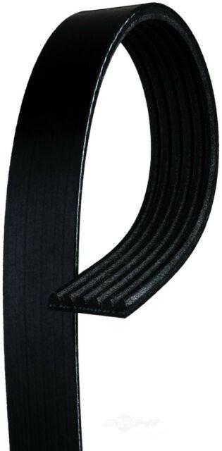 ACDelco 6K956 Professional V-Ribbed Serpentine Belt