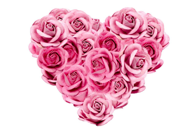 Image result for roses shaped like a heart