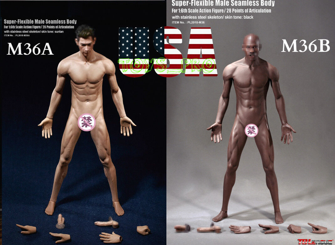 Tbleague phicen nahtlose stahlskelett männliche muskulöse figur körper m36 m36a usa