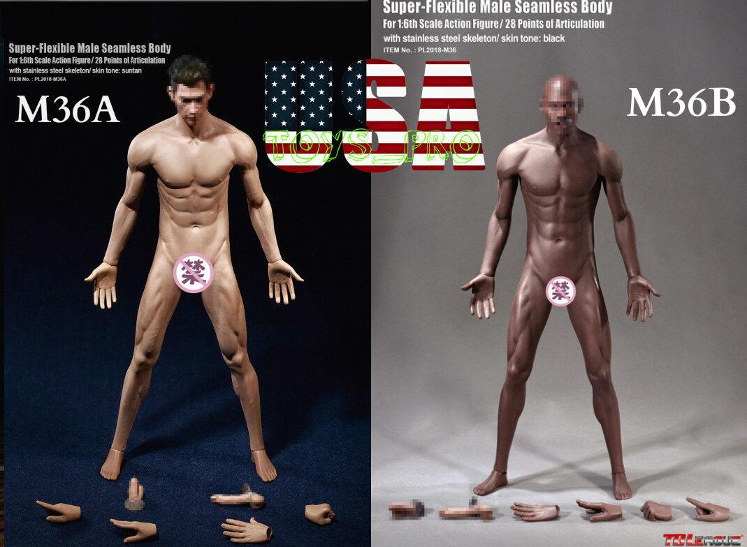 TBLeague PHICEN Seamless Steel Skeleton Male Muscular Figure Body M36 M36A USA