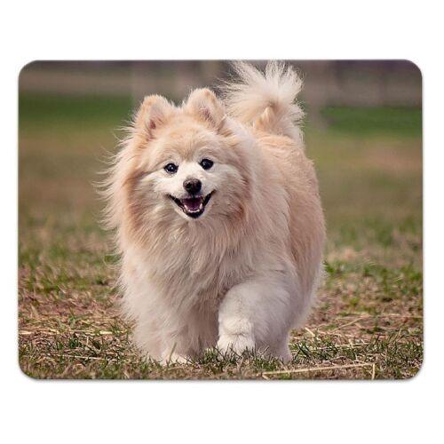 """funny dog Moosgummi mousemat Hunde Mousepad  /""""lustiger Hund/"""" 24x19cm"""