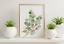miniature 54 - Bathroom Prints Botanical Eucalyptus STUNNING FINE ART PICTURE Minimalist funny