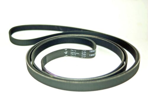 Compatible avec Beko Sèche-linge ceinture élastique Poly V Ceinture 7PH 1956 Equiv partie 2962470100