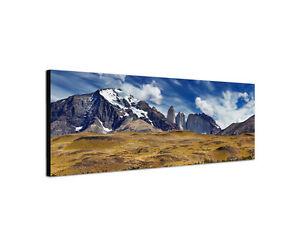 150x50cm-Guanako-Panorama-Torres-del-Paine-Lama-Lasttier-Berg-Leinwand-Sinus-Art