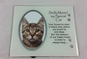 Cat-memorial-photo-frame-sadly-missed-special-cat-poem-memory-love-pet