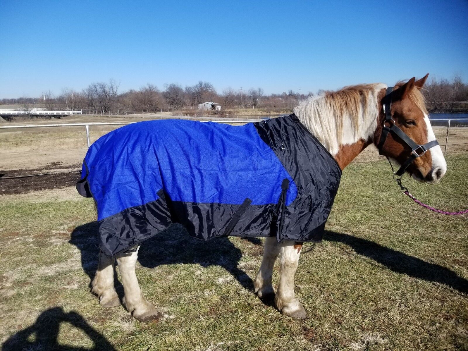 SALE  Draft horse 90  96  100  waterproof 1200 d sheet  not insulated  looking for sales agent
