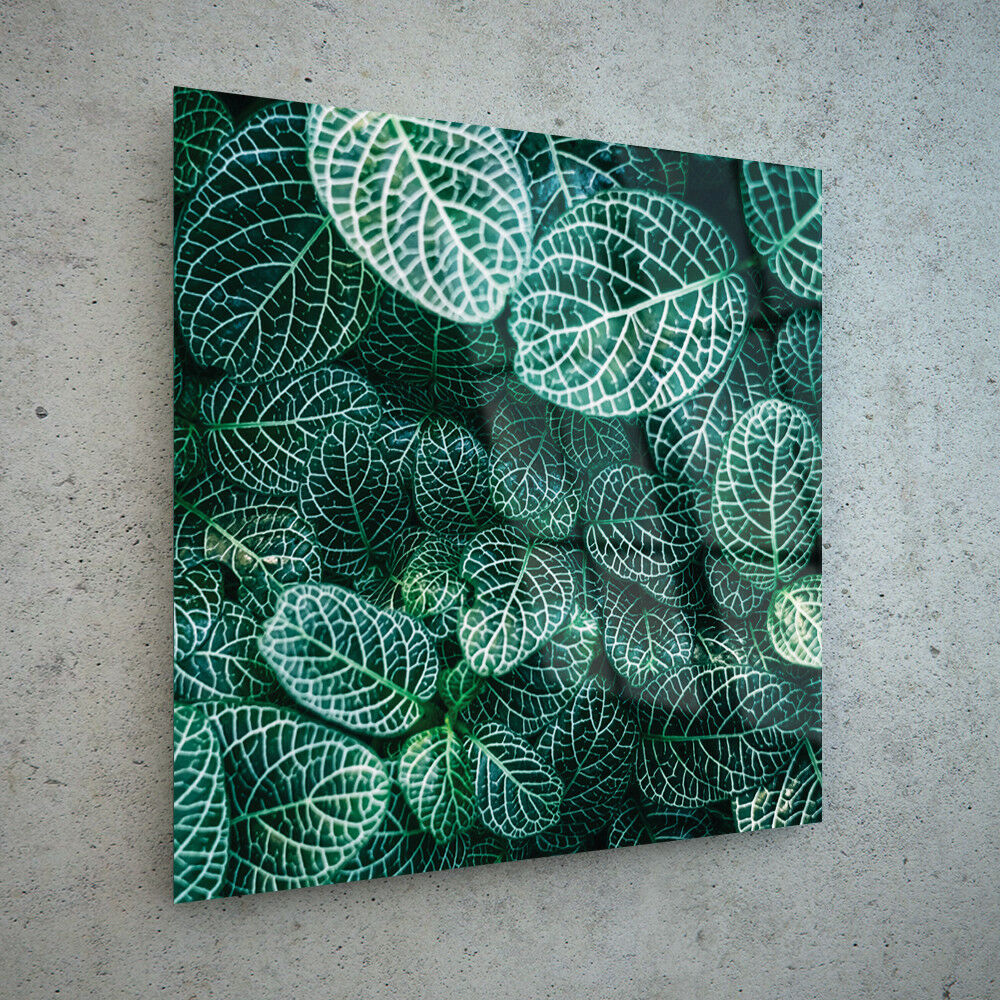 ANY ANY ANY Größe Wall Art Glass Print Canvas Picture Large Pattern Shape Leaves p202610 765e6d