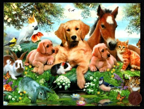 Birthday Horse Dogs Cats Rabbit Parrot Butterfly Hamster Birthday Greeting Card