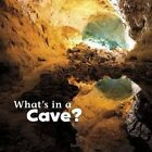 What's in a Cave? Rustad Martha E. H. 9781474706025