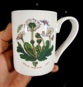 Beautiful-Portmeirion-Botanic-Garden-Daisy-Mug