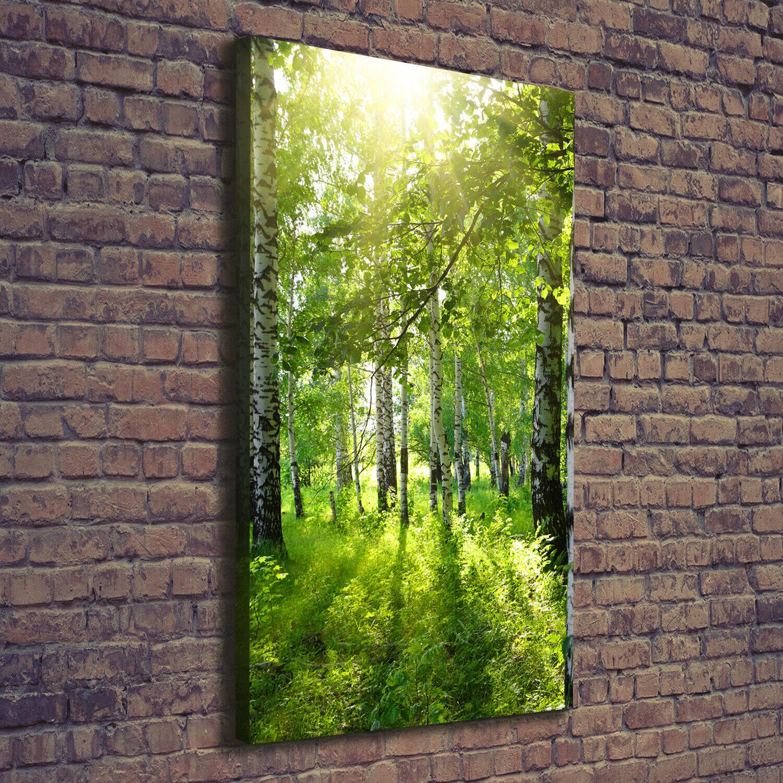 Leinwand-Bild Kunstdruck Hochformat 70x140 Bilder Birkenwald