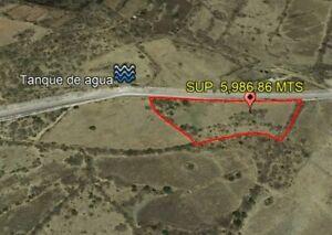 TERRENO EJIDO SAN MIGUELITO, QUERÉTARO SUP 5986 MTS