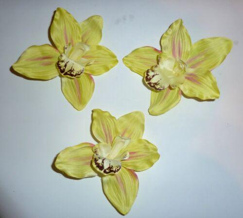 5 x orchideenblüte verde flores cabezas 16 cm x 17 cm Flores de arte