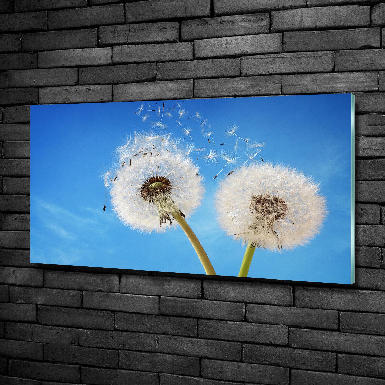 Acrylglas-Bild Wandbilder Druck 100x50 Deko Blaumen & Pflanzen PusteBlaumen