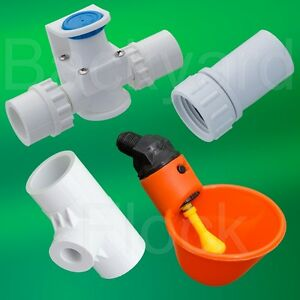 4 Cup Poultry Chicken Watering System w/ Tees, Pressure Regulator & Hose Adapter