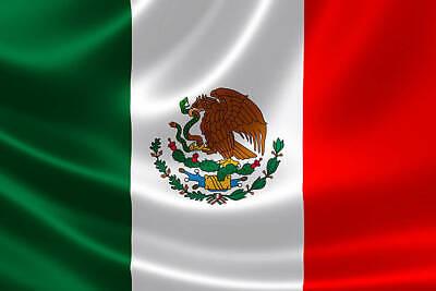 Mexico Flag Bügelbild,markenqualität Waschbar Bis 95°c