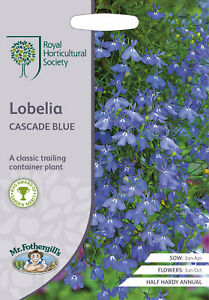 Rhs Lobelia Cascade Blue Seeds Ebay