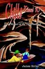 Chills Times 10 Ten Stories of The Supernatural 9780595369508 by James Hollar