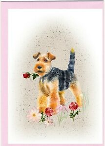 Welsh-Terrier-Dog-4-034-x6-034-Blank-Card-ideal-Mothers-Day-Valentine-Card-etc