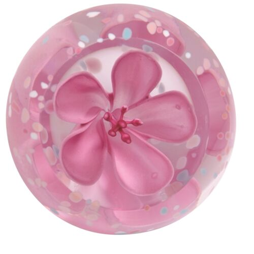 Caithness Glass U11056 Blossom Rose Paperweight