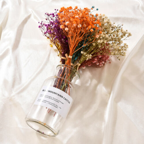 Flower Mini Decorative Flower Bouquet Dry Flower Backdrop Deco