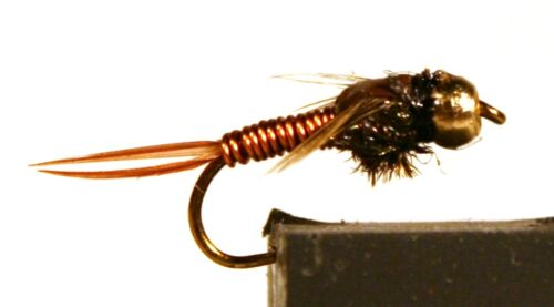 ICE FLIES Nymph. Copper John tungsten. (4-pack). Available in size 8 - 14