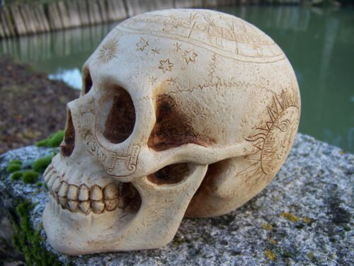 HF1582  CRANE  TETE  DE MORT ASTROLOGIE   FANTASY  FIGURINE CRANIO SKULL DRAGON