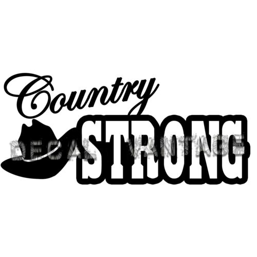 Country Strong Style BVinyl Sticker Decal Survive Girl Boy Choose Size /& Color