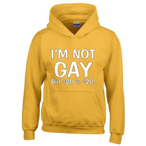I AM Not Gay But 20 Dollars is 20 Dollars HOODIE Sweatshirt Funny Party HOODIE