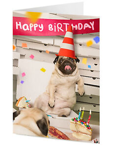 Image Is Loading HAPPY BIRTHDAY Funny Pug Dogs At Pizza Party