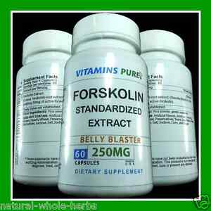 Forskolin extract ebay