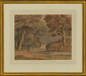 W-Hinchcliff-Late-19th-Century-Watercolour-Forest-Scene-with-a-Pond